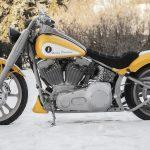 Killer custom|2006 FXST-01