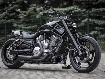 Killer Custom|2013 VRSCF
