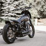 Killer custom|2014 FXDB-12