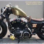 DK-Custom|Sportster 03