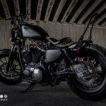 DK-Custom|Sportster 25